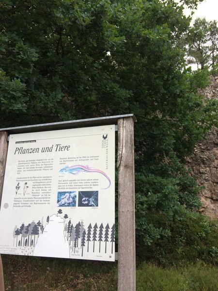 Zwei Themenwanderwege mit Infotafeln bieten ein interessantes Wandererlebnis