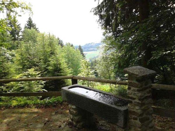Armtauchbecken auf der Ries beim Ortsteil Neunußberg der Stadt Viechtach