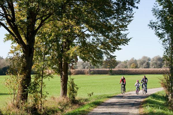 Auf dem Vilstalradweg können sie mehr als eine idyllische Flusslandschaft genießen!