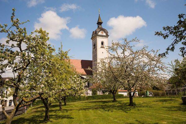 Pfarrkirche St. Emmeran