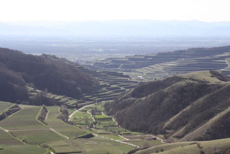 Strichmädchen aus Vogtsburg im Kaiserstuhl