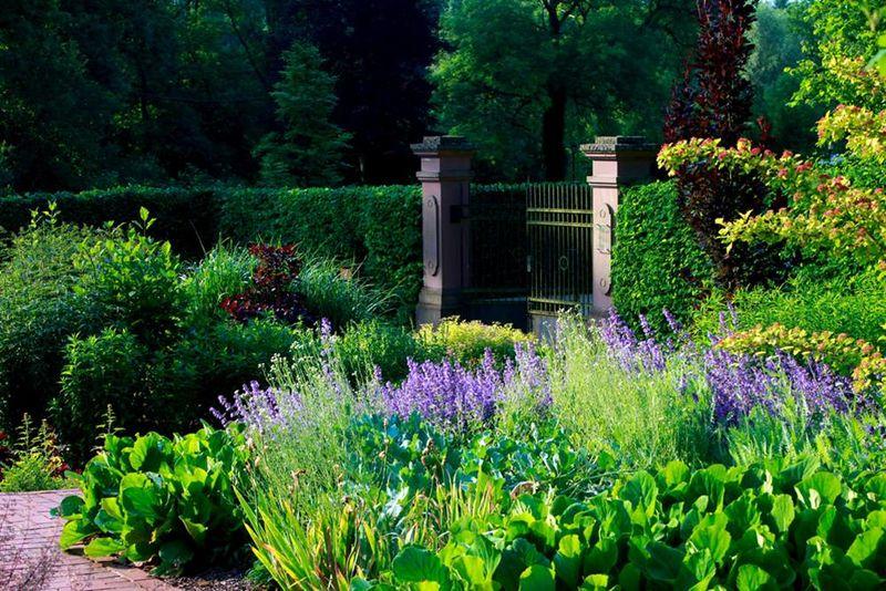 Jardin du ch teau dagstuhl jardins sans limites for Jardin pittoresque