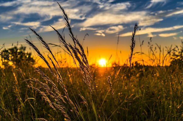 Waldeck Alraft Sonnenaufgang