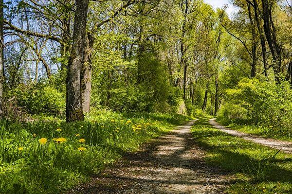 Eingänge Nationalpark Kellerwald Edersee