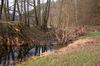 Das Naturschutzgebiet Regentalhänge bei Walderbach im Naturpark Oberer Bayerischer Wald