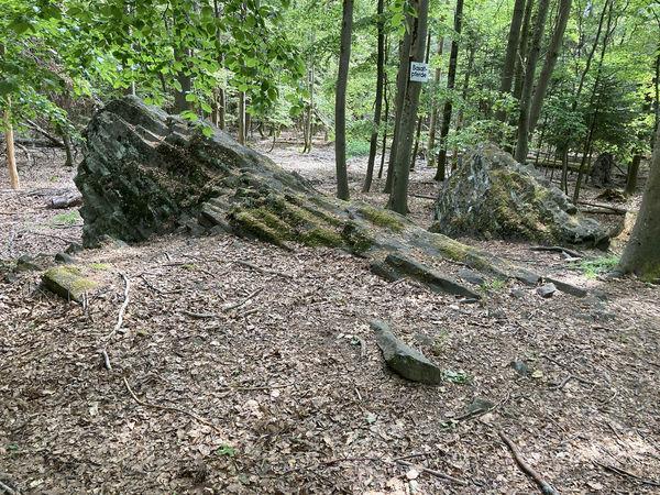 Die Basaltpferdchen sind vor ca. 20 Mio. Jahren entstanden