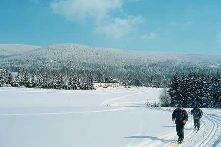 Ein idealer Wintertag zum Skilanglauf auf der Adalbert-Stifter-Loipe