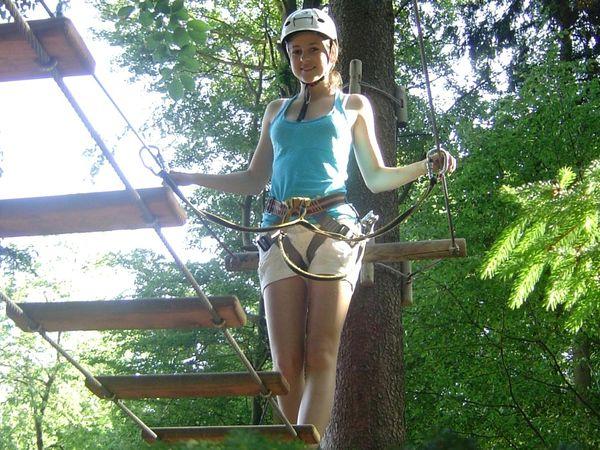 Auf Steigleitern erklimmen Sie im Kletterwald Waldkirchen die Baumkronen