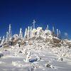Schneeschuhwandern rund um Waldkirchen