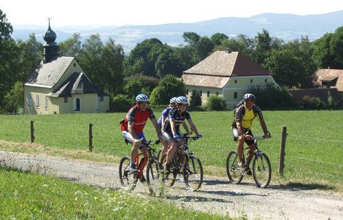 Mountainbiker auf einer Tour durch das Waldmünchner Urlaubsland