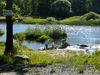 Der Perlsee bei Waldmünchen