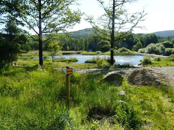 Wanderweg am Perlsee bei Waldmünchen