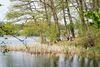 Däbersee, Foto: Florian Läufer, Lizenz: Seenland Oder-Spree
