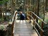 Brücke auf dem Wanderweg im Wildwassertal Bärnloch bei Wegscheid im Bayerischen Wald