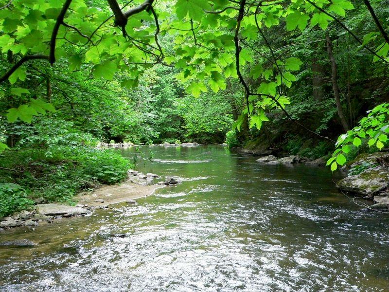 Der Osterbach fließt durch das Wildwassertal Bärnloch im Wegscheider Land