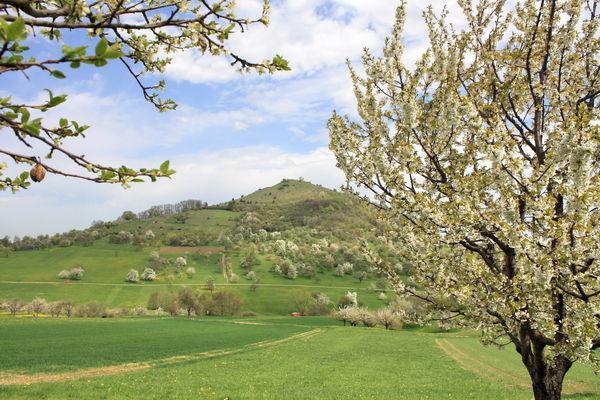 Limburg bei Weilheim an der Teck