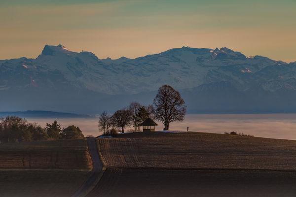 Aussicht zum Gupfen mit Blick auf die Schweizer Alpen