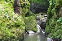 Beim Haselbach Wasserfall