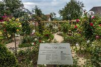 Rosend Duft Garten