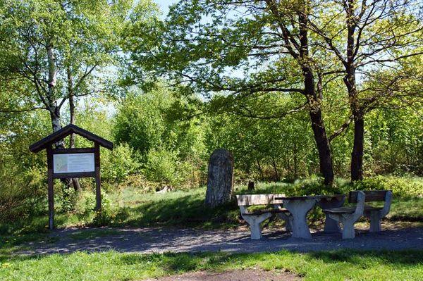 Dreiherrenstein am Kamp (Foto: Dieter Steffmann)