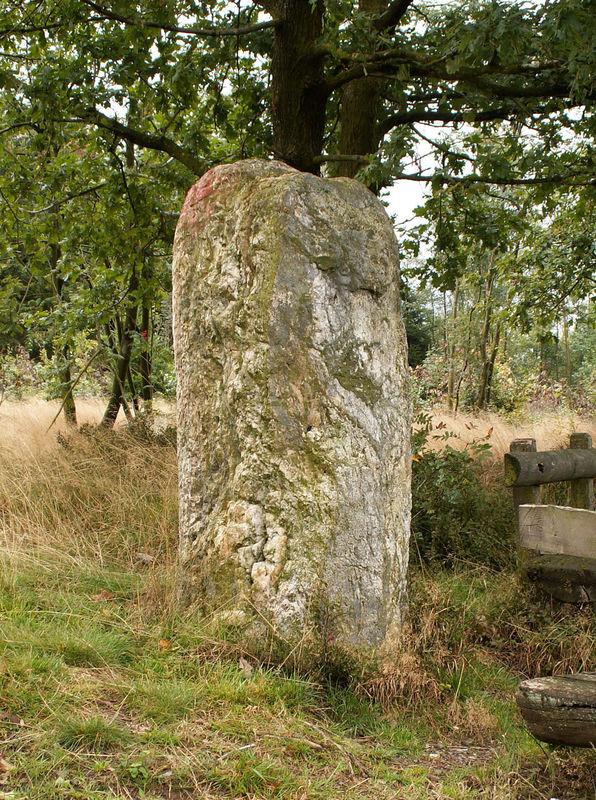 Dreiherrenstein am Kamp (Foto: Dorf- und Heimatverein Wildberg e.V., Marc Hanelt)