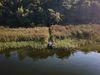 Großer Storkower See Steg, Foto: Christoph Creutzburg, Lizenz: Seenland Oder-Spree