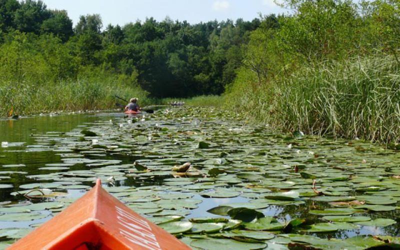 Vom Storkower See zur Glubigseekette - entlang des Naturparks Dahme-Heideseen