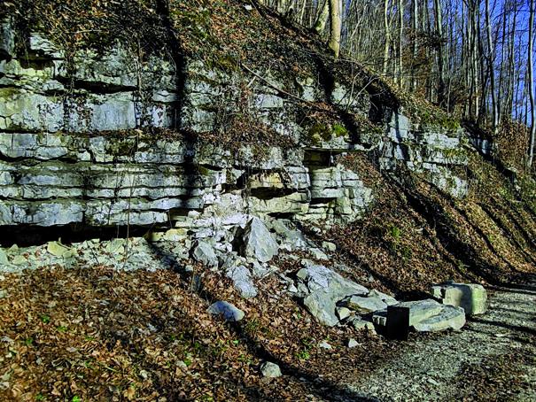 Wiesensteiger Geopfad - Steinschichten