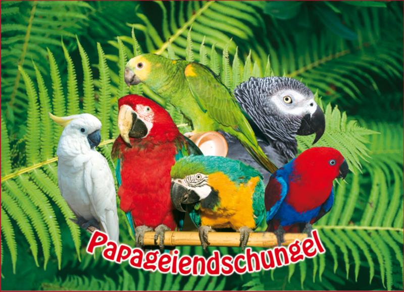 Papageiendschungel