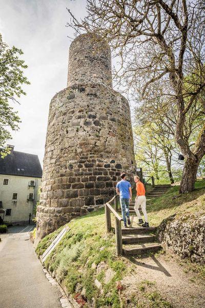 Butterfassturm der Burg Neuhaus bei Windischeschenbach