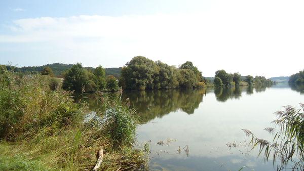 Die Insel in der Donau bei Windorf