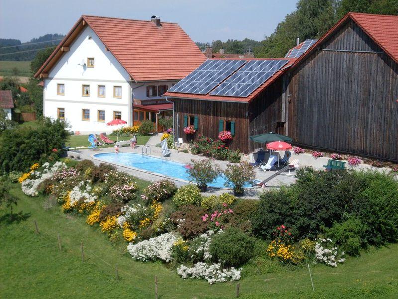 Blick auf den Pool beim Ferienhof Seidl bei Windorf im Bayerischen Wald