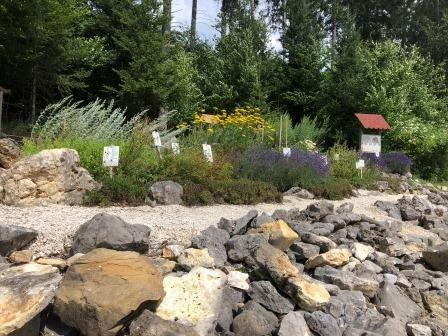 Kräuter- und Insektengarten Winterlingen