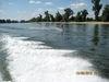 Riesenspaß beim Wasserskilaufen auf der Donau bei Winzer