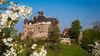 Schloss Berlepsch zur Kirschblüte