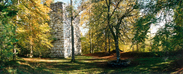 Burg Konzenberg