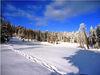 Schneeschuhwandern durch den Bayerischen Wald