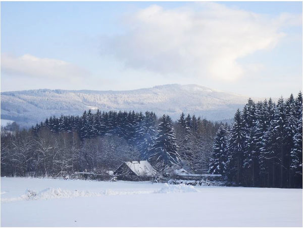 Ausblicke genießen beim Schneeschuhwandern