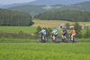 Rund um Zandt können Sie wunderbare Radtouren unternehmen