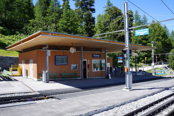 Le Riffelalp est situé sur un étage intermédiaire au Gornergrat, directement à la lisière de la forêt.