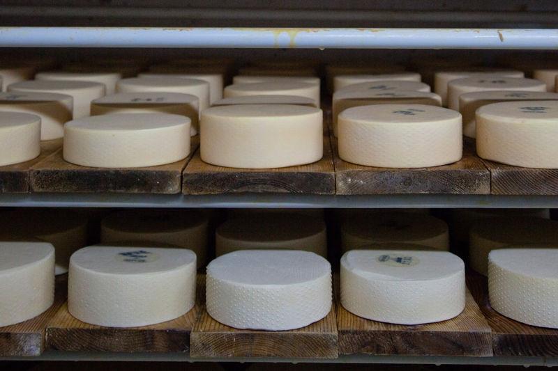 Die Käselaibe werden zur Lagerung auf Holzbretter gelegt.