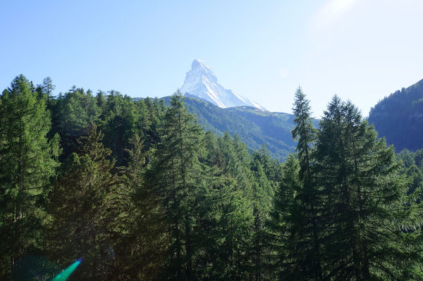 The Matterhorn rises up between the green forest and the blue sky.