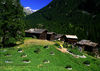 The hamlet of Blatten, south of Zermatt: a visit to the herb beds is well worthwhile.