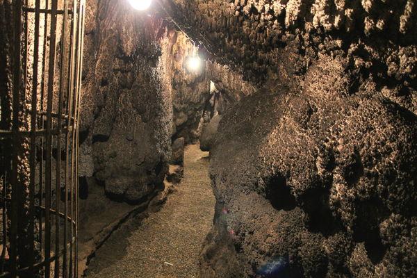 Zwiefaltendorfer Tropfsteinhöhle in Blank's Gasthof