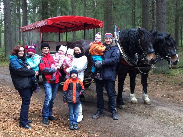 Kutschen- und Pferdeschlittenfahrten Hubert Greipl