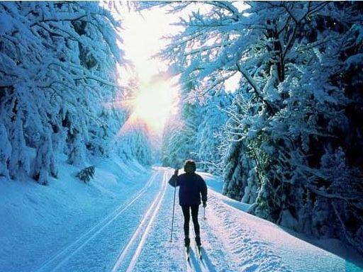 Traumhaftes Wintererlebnis in den Kaisersteigloipen in Rabenstein