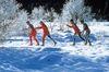 Wintererlebnis im Langlaufzentrum Zwiesel
